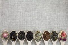 Variedade de tipos diferentes de chá em uma colher de madeira Imagens de Stock Royalty Free