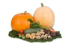 Variedade de vegetais. Fotos de Stock Royalty Free