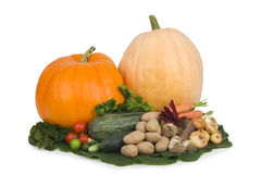 Variedade de vegetais. Foto de Stock Royalty Free