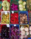 Variedade de vegetais Foto de Stock