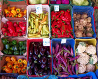 Variedade de vegetais Imagem de Stock