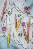 Variedade de vegetais crus da mola Imagem de Stock Royalty Free