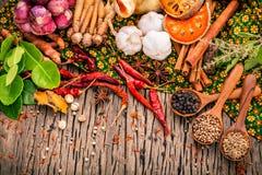 Variedade do alimento tailandês que cozinha ingredientes Ing vermelho da pasta do caril foto de stock