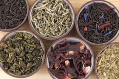 Variedade do chá imagens de stock