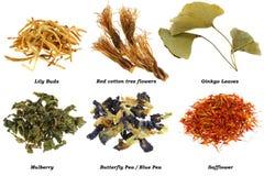 Variedade do chá erval secado fotografia de stock