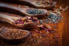 Variedade do chá seco Foto de Stock