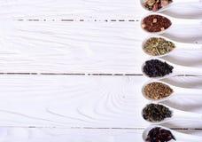 Variedade do chá seco imagem de stock royalty free