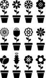 Flores em ícones dos potenciômetros Fotografia de Stock