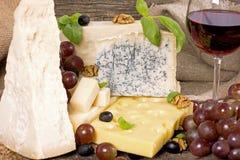 Variedade do queijo Imagem de Stock Royalty Free