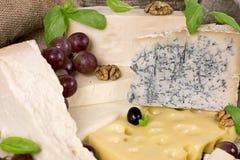 Variedade do queijo Fotos de Stock