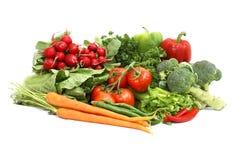 Variedade do vegetariano Imagens de Stock Royalty Free