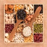 Variedade dos feijões e das lentilhas na colher de madeira com caixa de madeira miliampère Imagens de Stock