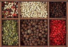 Variedade dos peppercorns Fotografia de Stock Royalty Free