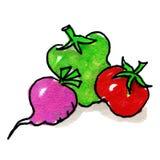 Variedade dos vegetais Fotografia de Stock Royalty Free