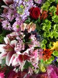 Variedade fresca atrativa brilhante do corte de ramalhetes da flor na exposição, 2018 Fotos de Stock