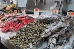 Variedade fresca do marisco Fotos de Stock Royalty Free