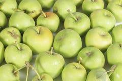 Variedade não comercial deliciosa de maçãs verdes pequenas Imagem de Stock Royalty Free