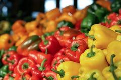 Variedades da pimenta de Bels Fotos de Stock Royalty Free
