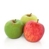 Variedades de Apple Imágenes de archivo libres de regalías