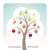 Variedades de Apple Imagem de Stock
