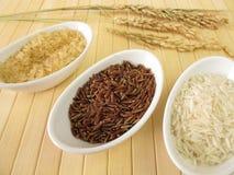 Variedades de arroz imagem de stock royalty free