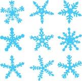 Variedades de copos de nieve Fotografía de archivo