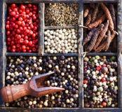 Variedades de grãos de pimenta Imagem de Stock