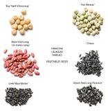 Variedades de las semillas de las verduras Fotos de archivo libres de regalías