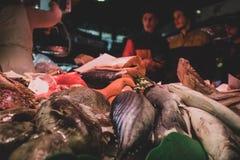 Variedades de peixes e de marisco na venda imagens de stock