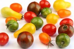 Variedades de tomate na tela branca Imagem de Stock Royalty Free