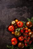 Variedades de tomates coloridos imagen de archivo