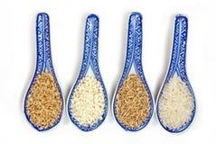 Variedades del arroz Foto de archivo libre de regalías