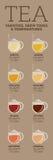 Variedades del té Tiempo y temperatura de la elaboración de la cerveza Fotografía de archivo libre de regalías