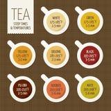 Variedades del té y guía el preparar Empapamiento de tiempo Imágenes de archivo libres de regalías