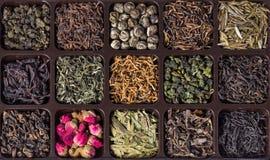 Variedades diferentes de chá chinês Imagens de Stock
