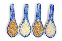 Variedades do arroz Foto de Stock Royalty Free