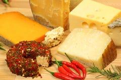 Variedades do queijo imagem de stock