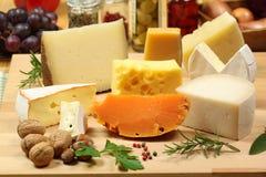 Variedades do queijo fotografia de stock