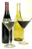 Variedades do vinho Imagem de Stock