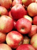 Variedades rojas de manzanas, una forma de vida sana de AppleRipe en el verano, muchas manzanas, un verano rojo maduro de la vari imagen de archivo