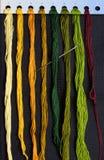 variegated резьбы комплекта иглы Стоковое Изображение RF