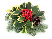 Variegated Holly Decoration Royalty Free Stock Photos