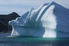 Variegated Iceberg Stock Photos