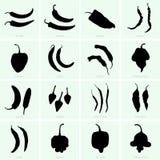 Varietà del pepe Immagini Stock Libere da Diritti