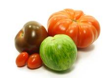 Varietà del pomodoro Immagine Stock