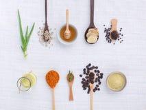 Varietà dell'erba su fondo bianco rustico dalla vista superiore, olio, coff Immagini Stock Libere da Diritti