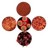 Varietà della spezia del peperoncino rosso Immagine Stock