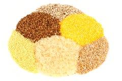 Varietà di cereali Fotografie Stock