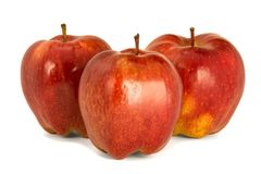 Varietà di fondo principale rosso di bianco dell'isolato delle mele rosse mature P Fotografie Stock