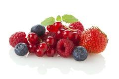 Varietà di frutta di bacca Immagine Stock Libera da Diritti